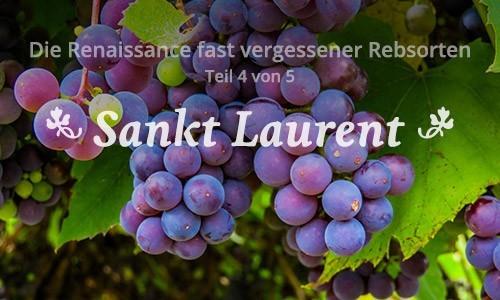 Der Sankt Laurent