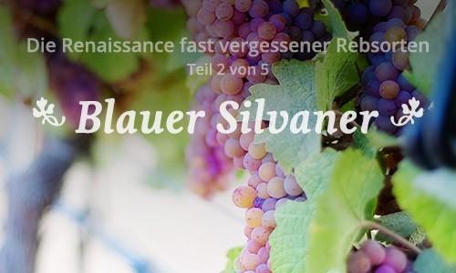 Der Blaue Silvaner
