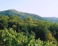 Weinland Hessische Bergstrasse