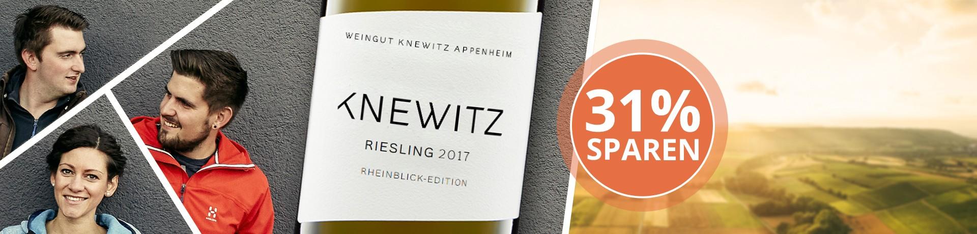 2017 Rheinblick Riesling Trocken - Weingut Knewitz